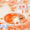 お祭りにちょっとした変化 金魚すくいはどこ?