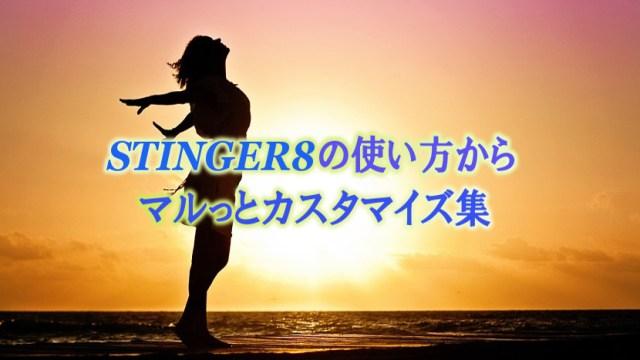 STINGER8のカスタマイズ集の画像