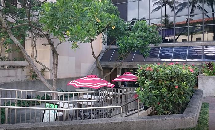 OEC cafe(おいしいカフェ)の場所は?