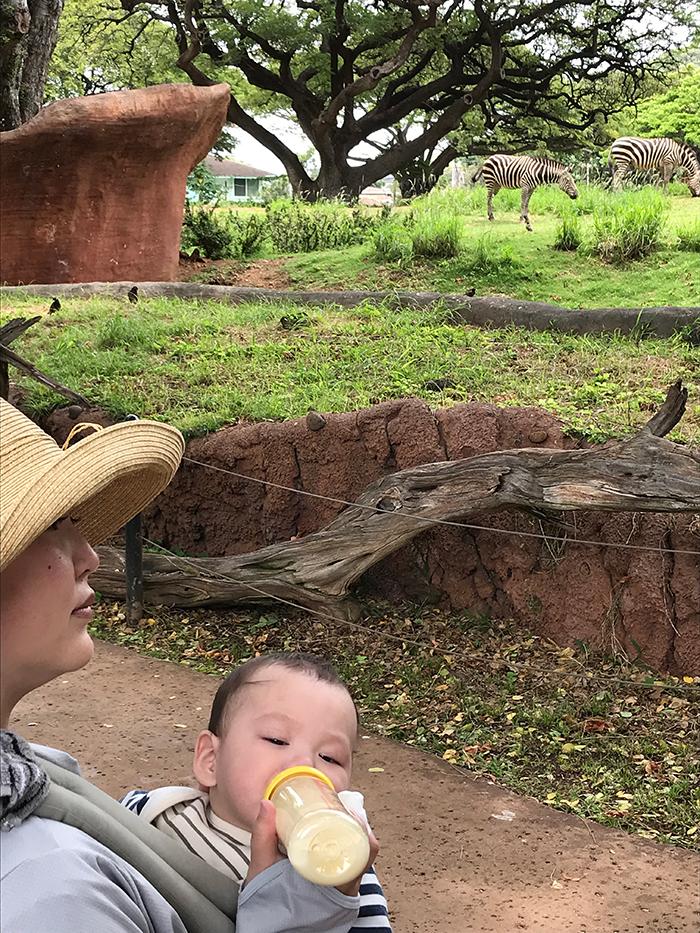 Honolulu Zoo(ホノルル動物園)