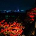 京都,ライトアップ,紅葉,デート,服装