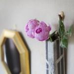 風水で玄関に置く鏡の位置、どこが正解ですか?
