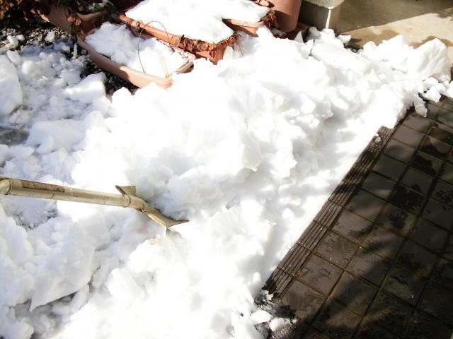 雪かき スコップ 選び方