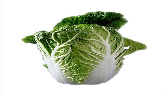 葉野菜 保存 白菜