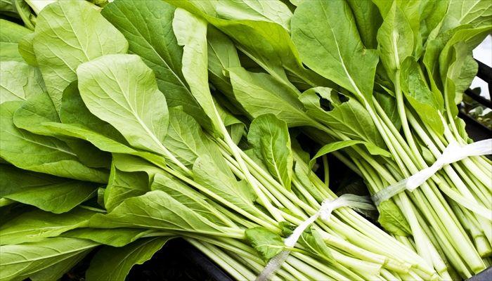 葉野菜 保存 ほうれん草
