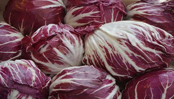 葉野菜 保存 トレビス