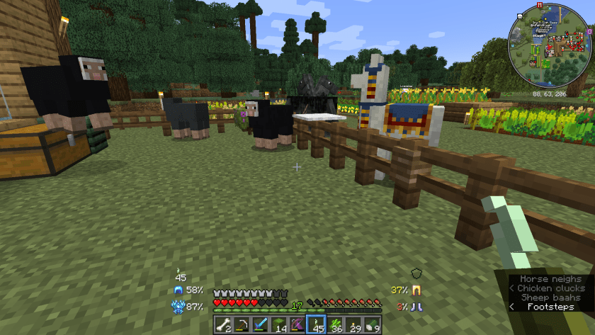 My 3 sheep, 2 horses, and 1 llama by the front garden.
