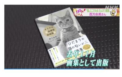 NHK「ニュースほっと関西」1