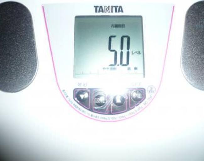 1ヶ月目終了の内臓脂肪率