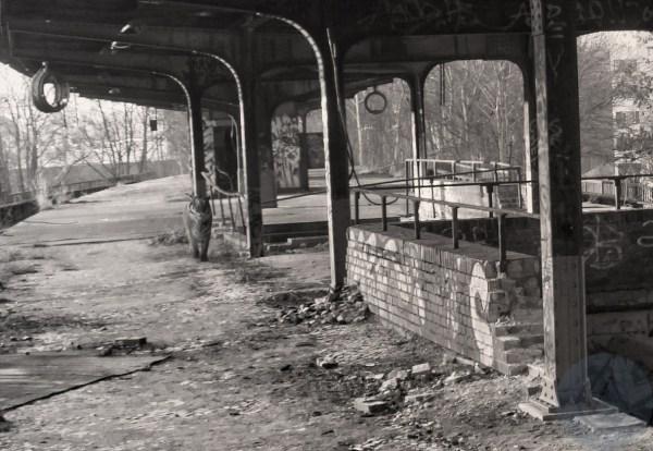 Project OFFSIDE - Wild at Siemensstadt Station Berlin #2 -detail