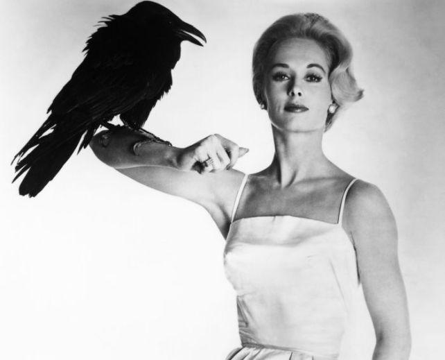 Tippi Hedren wsesji promującej film Hitchcocka - Ptaki