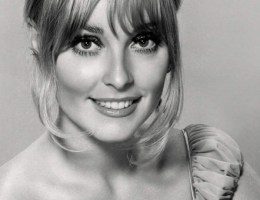 Sharon Tate - kim była żona Polańskiego