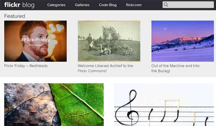 flickr blog wordpress sites