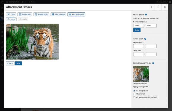 wordpress image flip