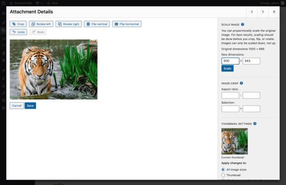 wordpress image scale