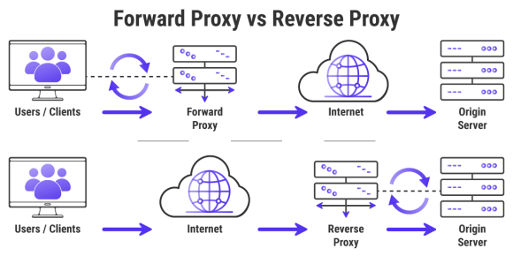 Infographic showing the differences between Forward Proxy vs Reverse Proxy