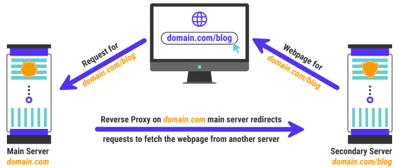 An example of a reverse proxy server use case