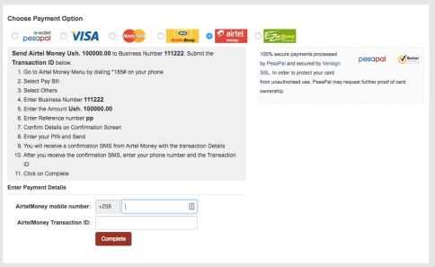 Payment Interface on the web interface