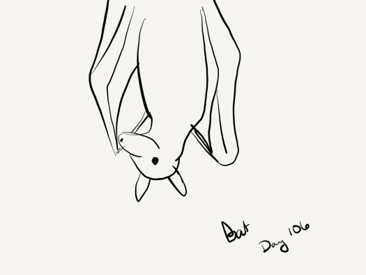 A line drawing of a bat hanging from the ceiling.