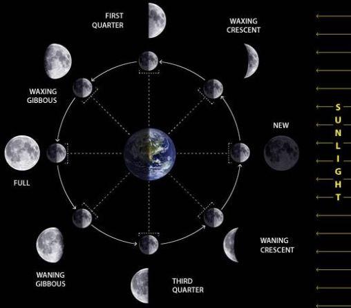 The Lunar phase(Moon) | kiranvoid