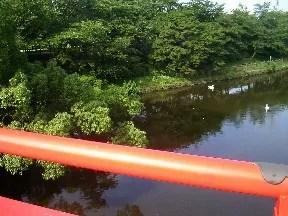 橋の真ん中から撮影現場を撮影。