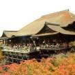 清水寺でランチ 子連れならどこが良い?京都っぽい食事でも昼ごはんでリーズナブルに済ませたい