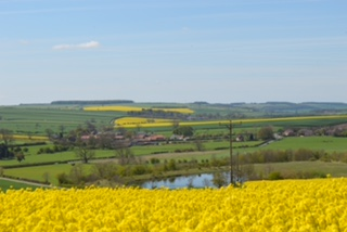 Duggleby Village