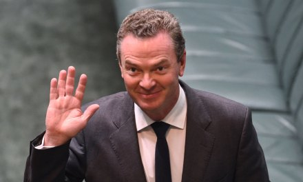 Incident: Pyne says he was hacked after Twitter account 'likes' porn | MSN