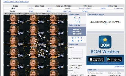 Incident: Roseanne's face appears on BoM site, but hack denied | iTWire