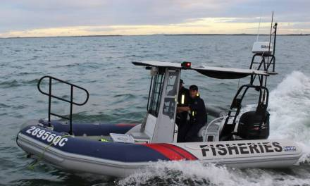 Incident: Fisheries Qld blames bad update for password 'fault'   iTnews
