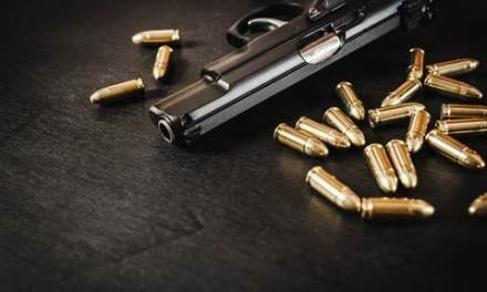 Audit: WA guns database sprayed over integrity issues | iTnews