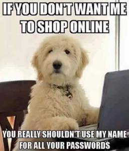 Dog Shopping Online