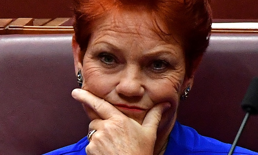 Incident: Pauline Hanson's website redirected to refugee council site   SBS News