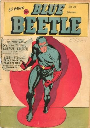 14 - beetle 1