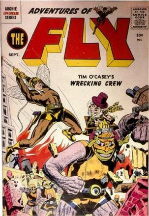 14 - fly 3