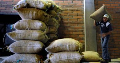 Arabica coffee hits six-week low on stronger dollar