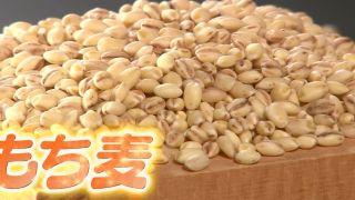 もち麦の炊き方&ゆで方!ダイエットに効果的な食べ方!【ビビット】