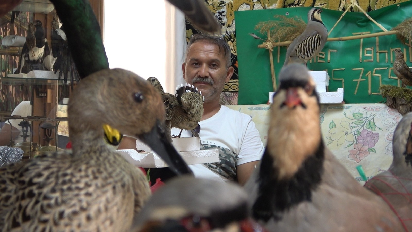 Tahnit ustası av köşkünde doldurduğu kanatlı hayvanları sergiliyor