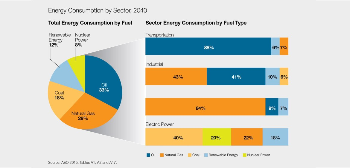 Energy Consumption by Sector by Fuel Type