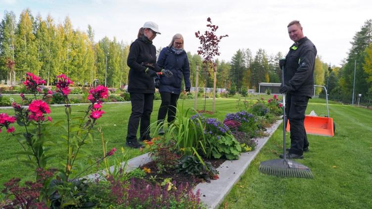 Joensuun hautausmaan työntekijät Kirsi Kinnunen, Virpi Kiviniemi ja Jarkko Kallinen seisovat uuden hauta-alueen perennaistutusten ja palkkirivien luona.