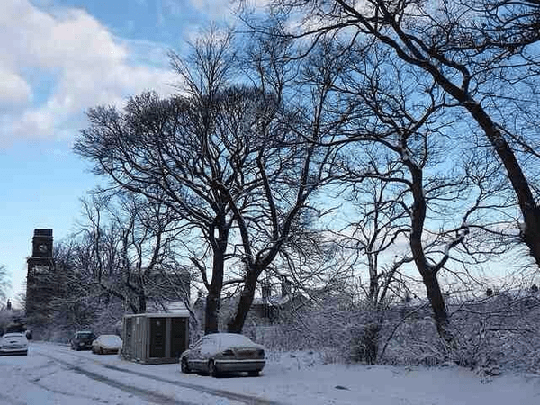 Snow in Newsome