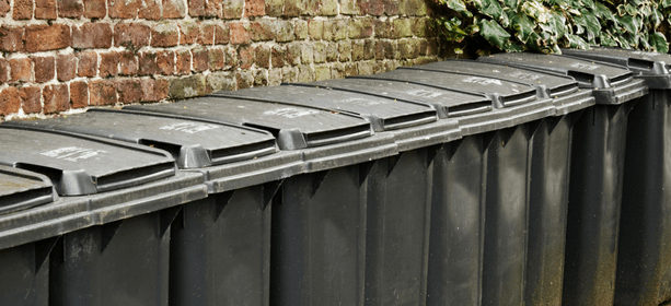 bin collections affected by the weather