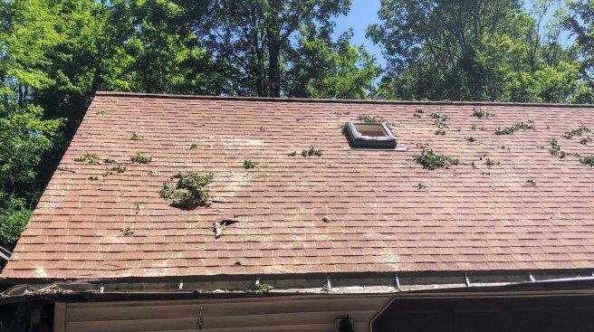 garage roof no tree.jpg