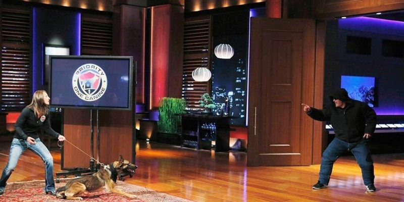 Priority One Canine Guard Dogs - Shark Tank