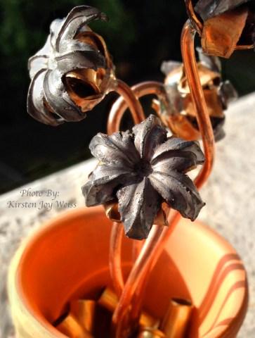 Bullet bouquets in sun