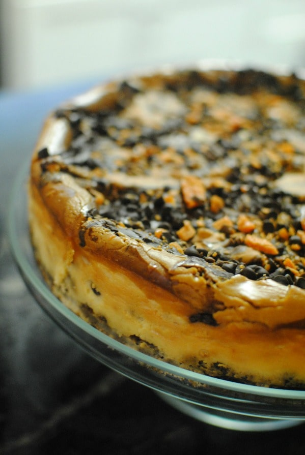 Crispity crunchety Butterfinger Cup Cheesecake. #thatnewcrush #cbias #shop