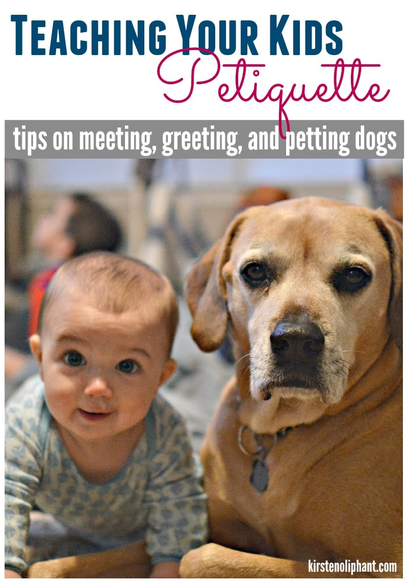 Here are some great tips to teach your kids how to act and behave around dogs. Plus a free printable! #ad #ProPlanPet #cbias