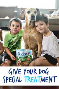 Give your dog the special TREATment with Nudges Grillers and Sizzlers! #Ad #NudgeThemBack