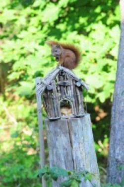 egern 1