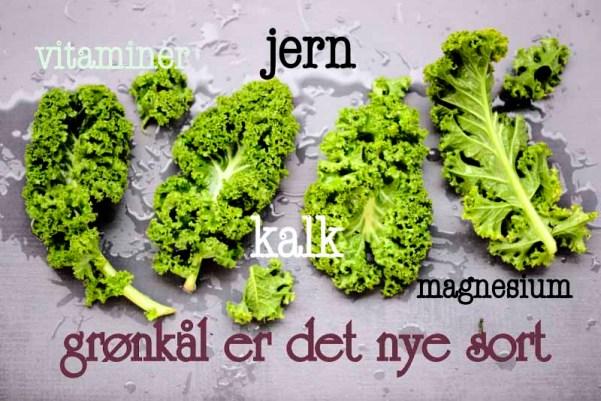 grønkålsblade m tekst